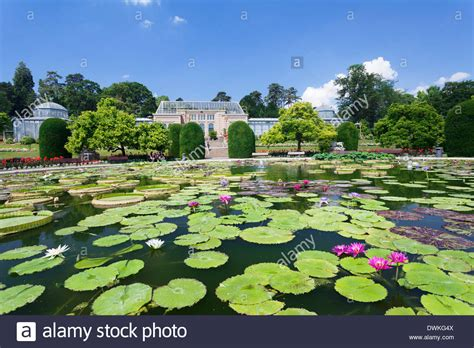 Wilhelma Zoo And Botanical Garden Moorish Garden With Water Lilies Genus Nymphaea Wilhelma Zoo And Stock Photo Royalty Free