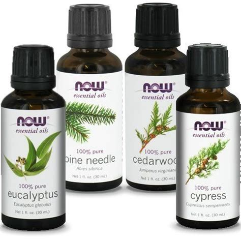 Pine Needle Detox Brain by Now Foods 1oz Oils Woods Pack Eucalyptus Pine Needle