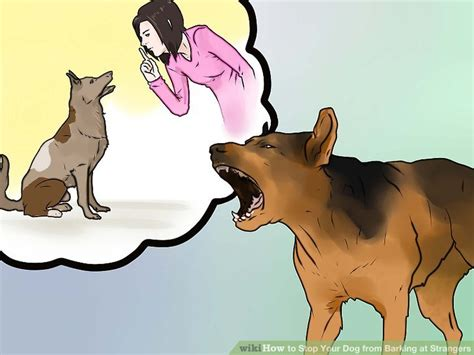 how to a not to bark at strangers how to stop your from barking at strangers 11 steps