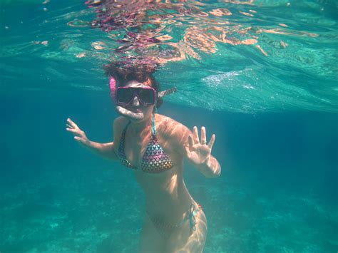for snorkeling snorkeling trips and tours sail fish scuba