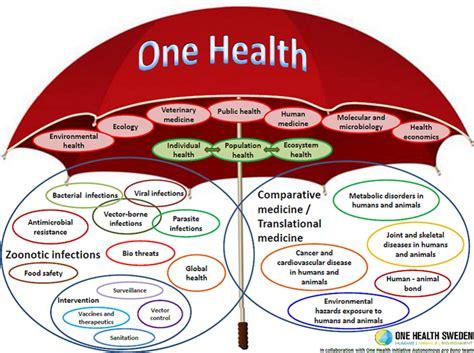 one health initiative one world one medicine one health