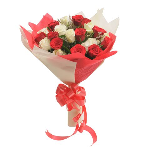 Two Dozen Roses by Two Dozen Roses Bunch Of 24 Roses 14 10 White With