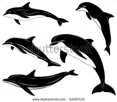 jumping dolphin tattoo clipart panda free clipart images