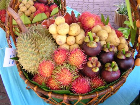 s fruit thailand till 4 thai fruit festival daily events timetable