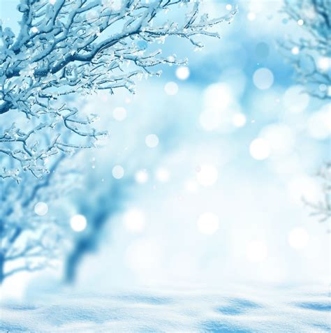 Set Snowy snowy photography to set your spirit