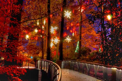 Lights Botanical Gardens Atlanta 6 Best Places To See Lights In Atlanta Gafollowers