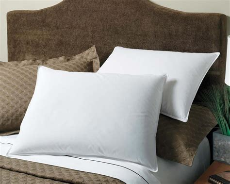 Feather Pillow Cleaning Service july e news sleep tight clean pillows make a difference