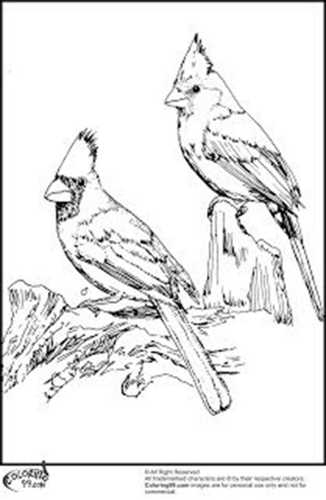 printable cardinals on pinterest cardinals cardinal