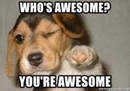 who s awesome you re who s awesome you re awesome you re awesome meme