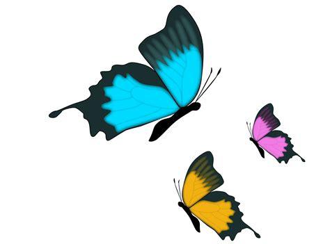 farfalle clipart clipart farfalle