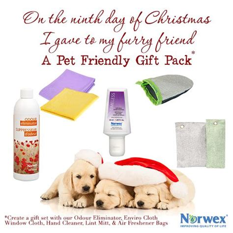 ninth day of christmas ideas 21 best norwex 12 days of 2014 images on norwex biz norwex cleaning and