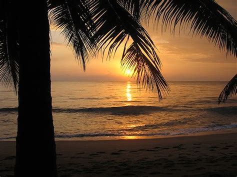enamorate de mi isla puerto rico on pinterest 142 pins 142 best enamorate de mi isla puerto rico images on