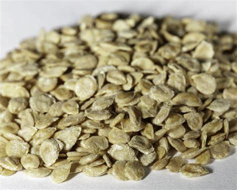 best tomato seeds heirloom mortgage lifter tomato seeds ndg botanicals