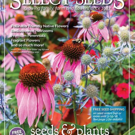Garden Plants Catalogs by Flower Nursery Catalogs Thenurseries