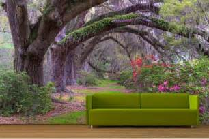 Enchanted Forest Wall Mural enchanted forest theme bedroom enchanted forest
