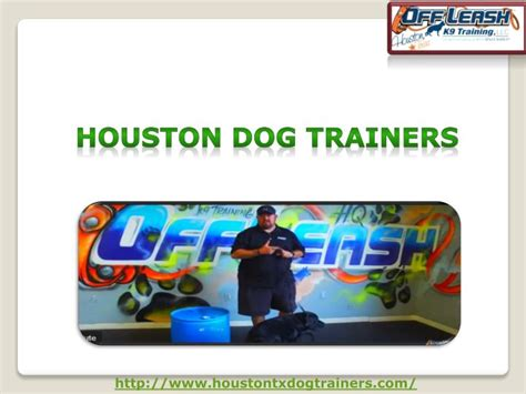 best dogs in houston ppt best trainers in houston usa powerpoint presentation id 7516038