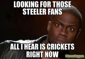 Steelers Fans Memes - looking for those steeler fans all i hear is crickets