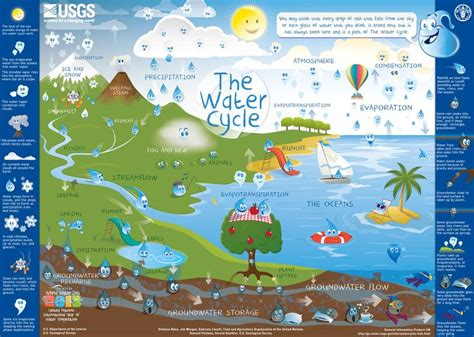water cycle placemat science printable water cycle placemat or poster the u s geological survey usgs and the food and