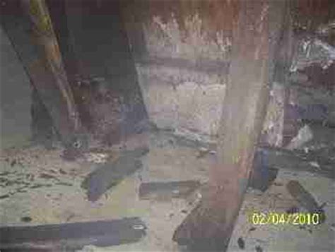 white mold in basement dangerous basement water and mold causes moldy house and attic study by david grudzinski