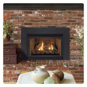 Fireplace Coquitlam by Vancouver Gas Fireplace Insert Gas Fireplace Insert