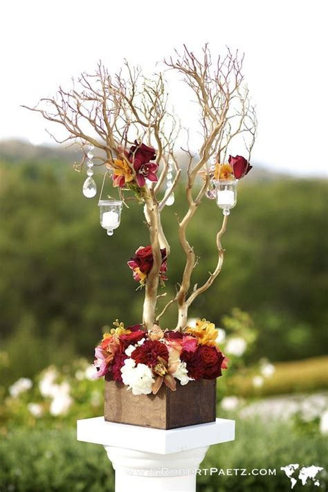 tree centerpiece ideas best 20 manzanita tree ideas on manzanita
