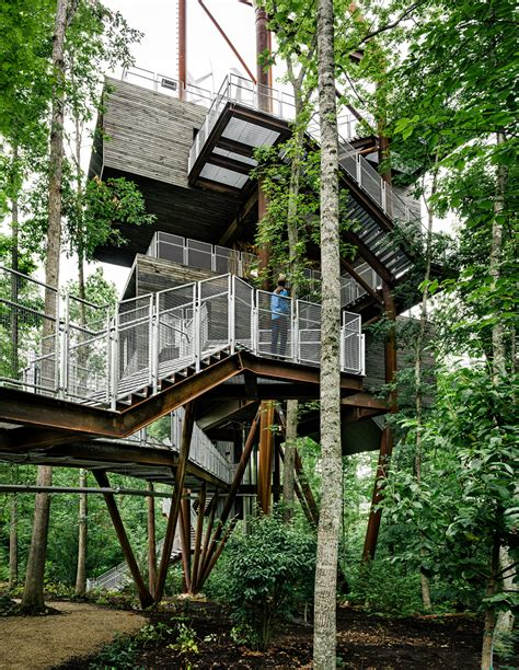 tree houses in virginia seattle djc com local business news and data architecture engineering mithun s