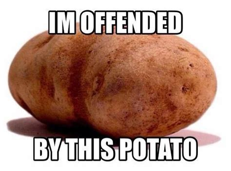 Funny Potato Memes - i m offended by this potato quotes politics