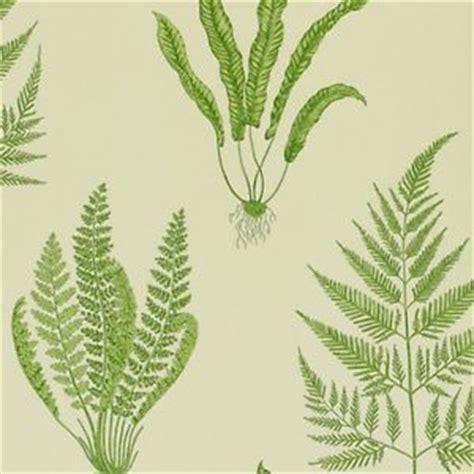 Green Wallpaper Ebay   green dapgwo102 woodland ferns a painter s garden