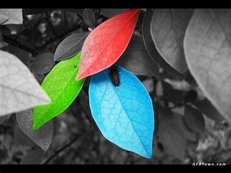 photoshop select color colores selectivos en fotograf 237 a taringa