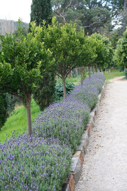 wonderful  cheap diy idea   garden