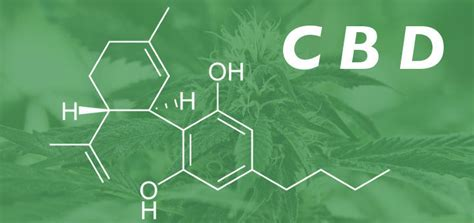 cbd hemp the secret cure of the human books cbd for endometriosis reduce your inflammation naturally