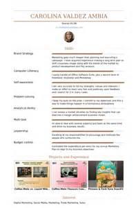 digital marketing strategist resume sles visualcv