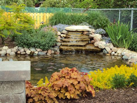 Backyard Pond Images by Building A Backyard Pond Glenns Garden Gardening