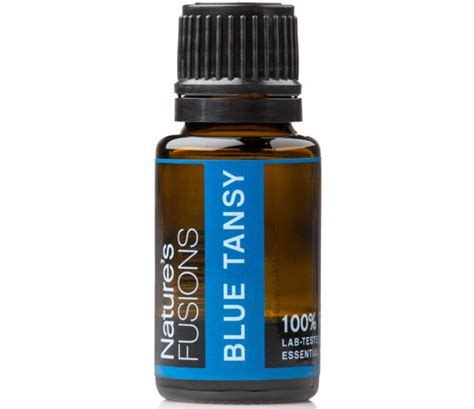 blue tansy essential 5ml or blue tansy essential 4ml tanacetum annum by