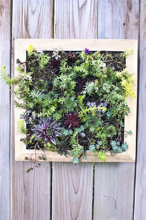 diy vertical garden top 10 diy outdoor succulent garden ideas top inspired