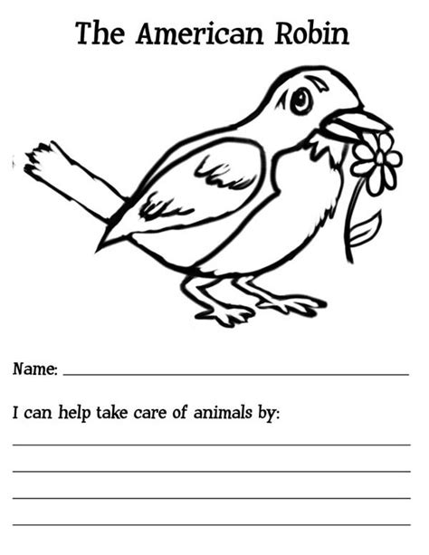 american robin coloring page 92 coloring pages birds robin robin bird feeding