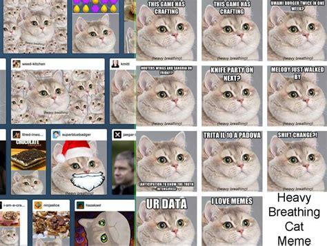 Heavy Breathing Meme - heavy breathing cat meme