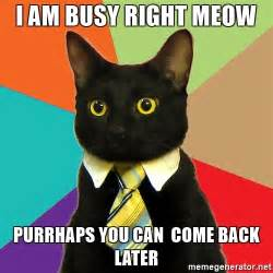 Can Am Meme - i am busy right meow purrhaps you can come back later