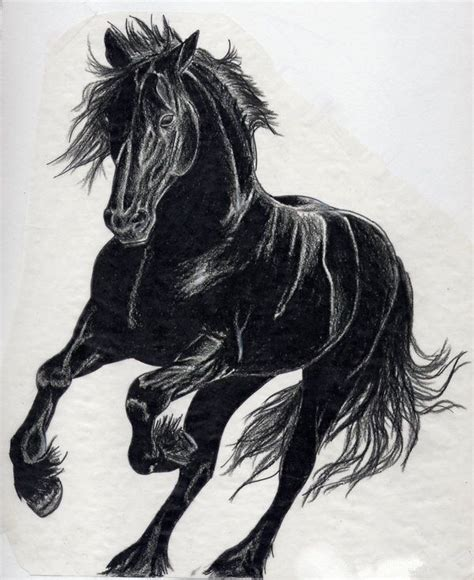 horse horse tattoo pinterest black horses black and