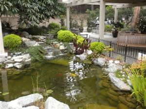 Small Backyard Fish Ponds by Koi Pond Picture Of South Coast Botanic Garden Palos