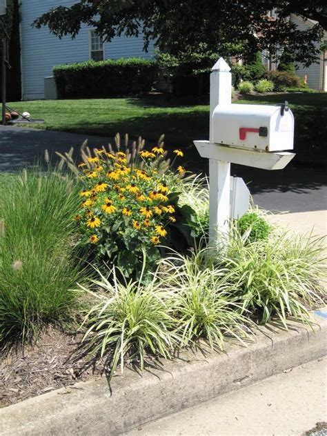 mailbox flower bed flowers around mailbox photos