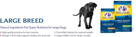 wellness large breed puppy food large breed wellness australia