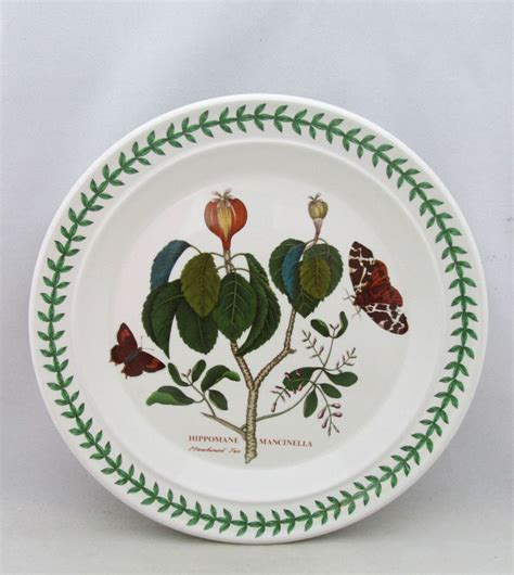 Botanic Garden Pottery 116 Best Images About Portmeirion Botanic Garden My Dishes On Pinterest Serving Bowls Gardens