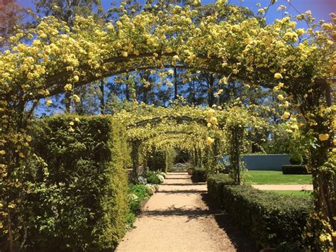 sublime blue mountains wedding venues articles easy