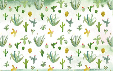 cactus background cactus wallpapers and background images stmed net