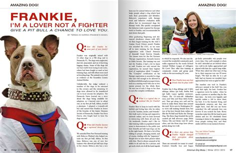 articles on dogs jeanne photography pet portraits by jeanne welcome