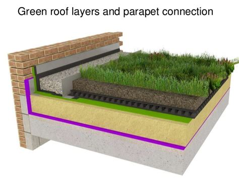 Wall Panel Ideas planning green roofs and green walls structural design