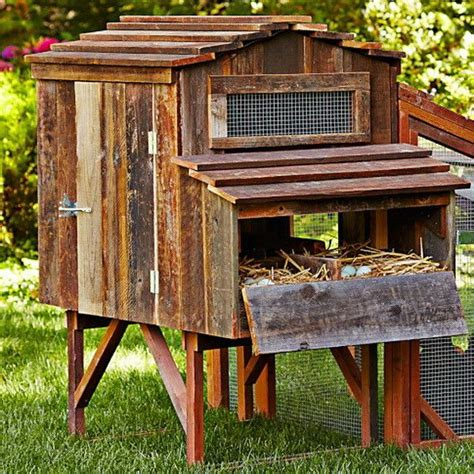 Easy Backyard Chicken Coop Plans 1000 Ideas About Simple Chicken Coop On Diy Chicken Coop Chicken Coops And Raising