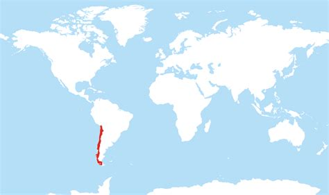 chile location on world map where is chile located on the world map