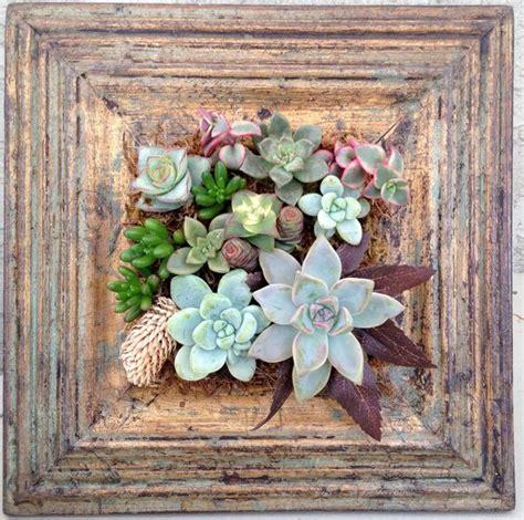 cornici per quadri fai da te un quadro di piante grasse fai da te 20 idee stupende